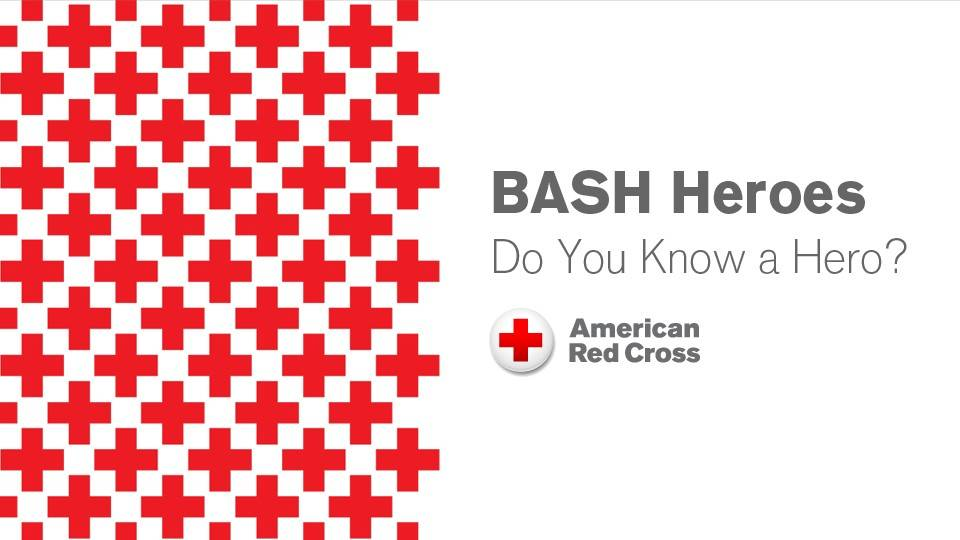Northeast Ohio - BASH Heroes