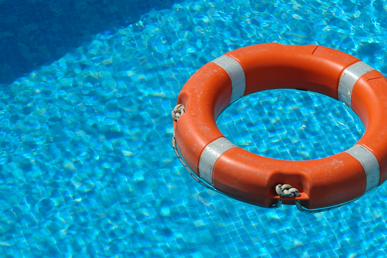 Life saver floats in pool