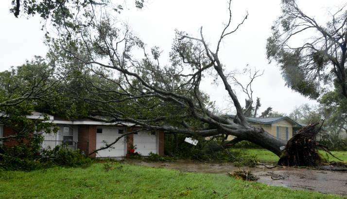 Hurricane Harvey - Tree fallen on house after the hurricane