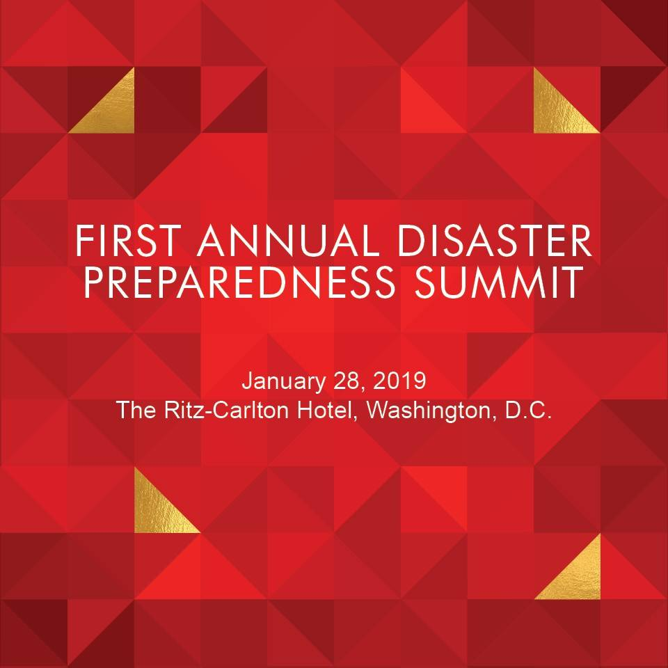 First Annual Disaster Summit Banner with Geometric Abstract Design