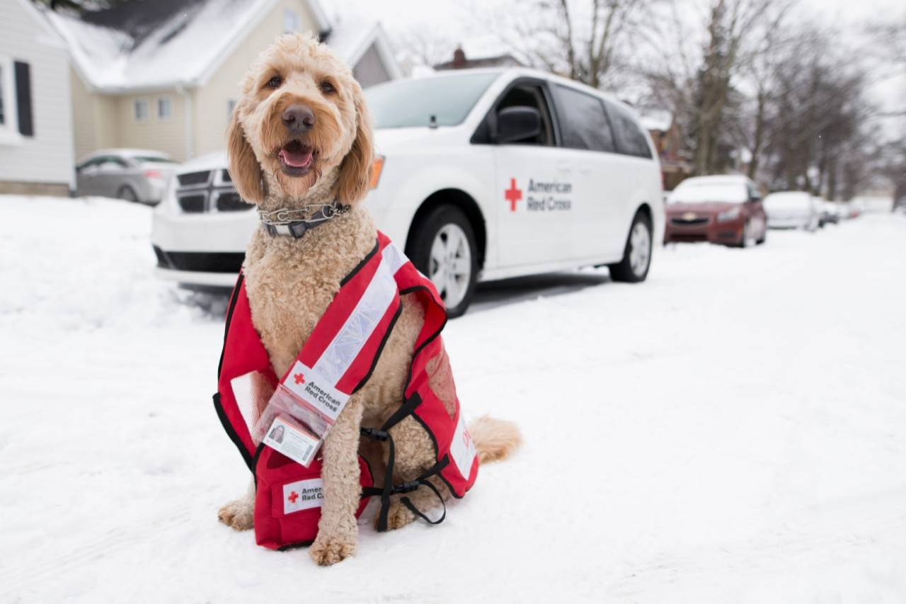 February 6, 2018.