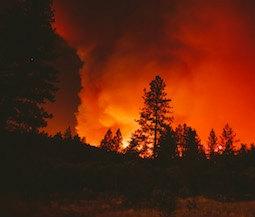 best wildfire apps