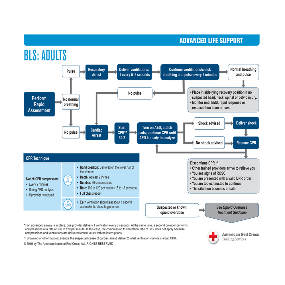 ALS Treatment Guidelines on Card Stock | Red Cross Store