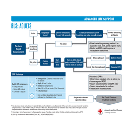 ALS Treatment Guidelines on Card Stock - Set of 11