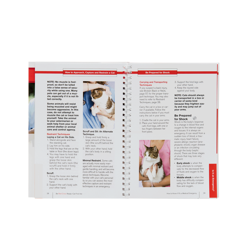 Cat first aid red cross store images xflitez Choice Image