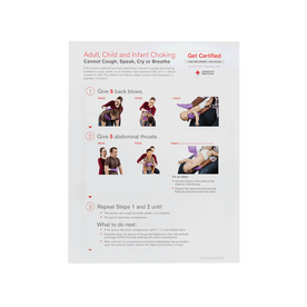 Choking Skill Poster, Rev. 2016