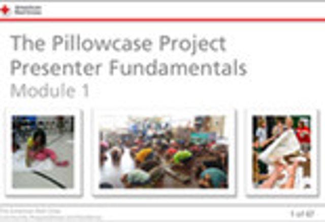 Pillowcase Project screenshot